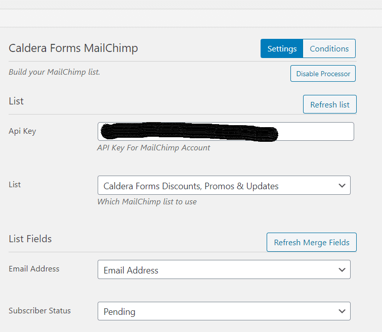 Input API key in Mailchimp add-on