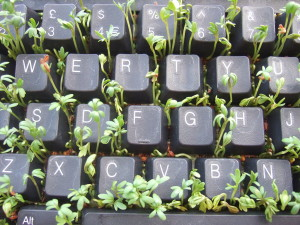 Sprouting through a keyboard