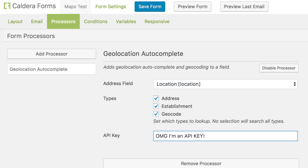 The Caldera Forms Geolocation Field processor settings with the API key set