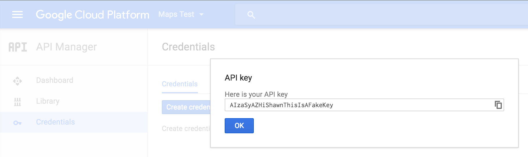 google map api key