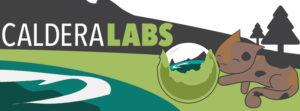 Caldera Labs banner with Catdera mascot