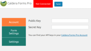 Caldera Forms Pro API Client Settings: API Keys