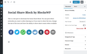 The Social Block interface