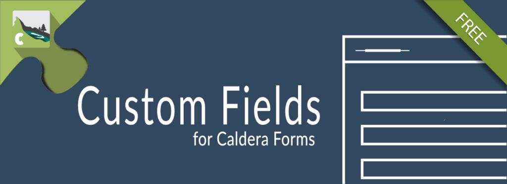 Custom Fields For Caldera Forms Add-on